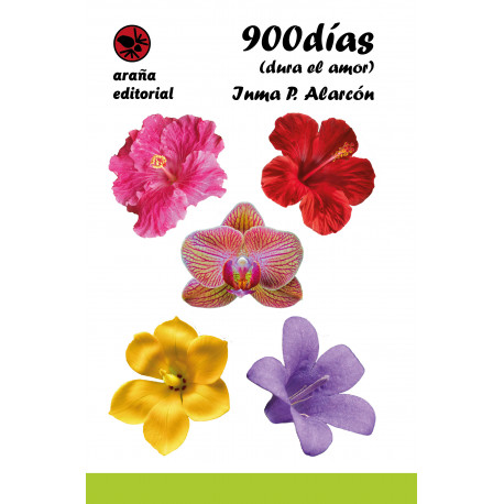 900 días ( dura el amor)
